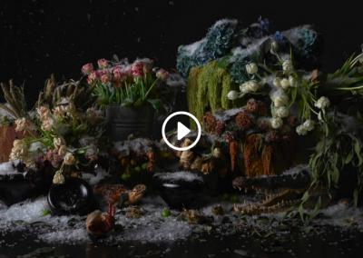 FLORA – A Short Film